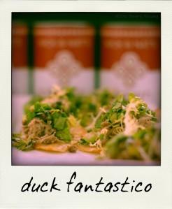 duck fantastico